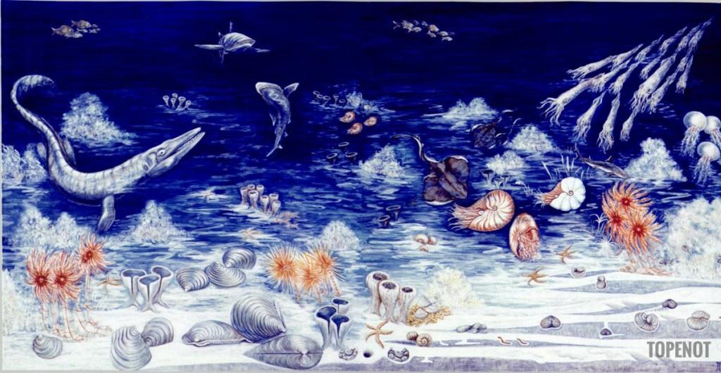 Fond marin-cretace-superieur-Reims-2000